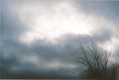 somber sky bleak graduation
