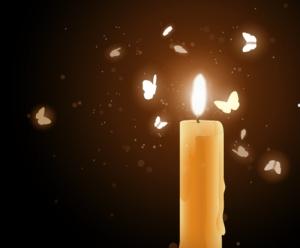 bigstock-moths-near-a-candle-25674725-2