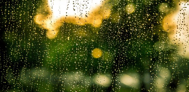 bokeh-drops-of-water-rain-8486.jpg